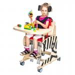 Реабилитационное кресло Akcesmed Зебра Zb-1